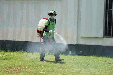 Spray chemicals to disease prevent
